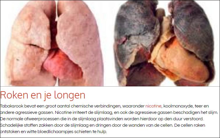 longen houden niet van fijnstof